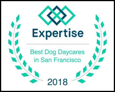 Dog Daycares