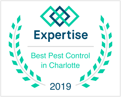 Best Pest Control Companies in Charlotte