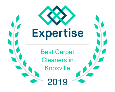 Best Carpet Cleaners in Knoxville
