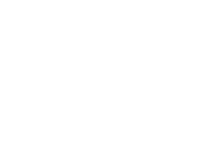 Best SEO Experts in Dallas