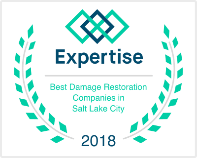 Expertise Best Damage Restoration Company 2017 badge