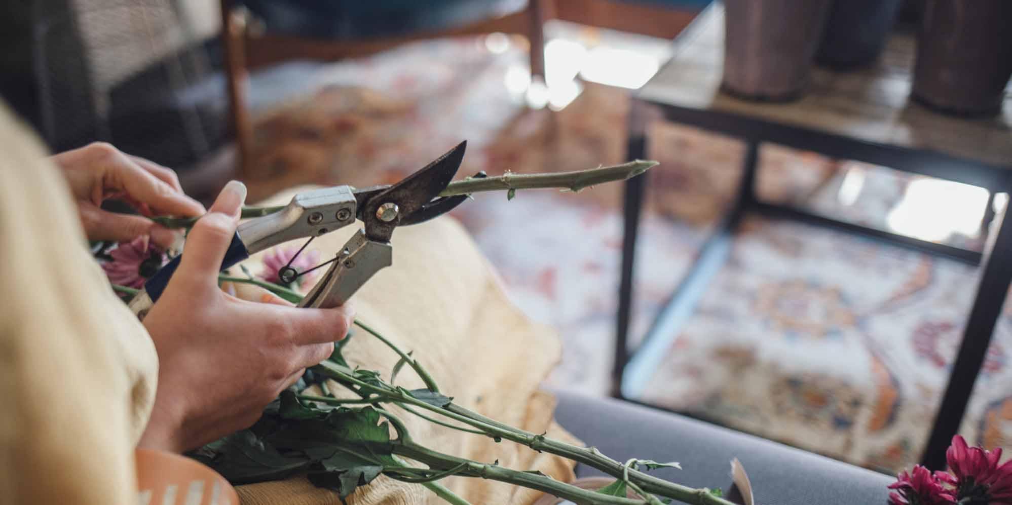 Strange 20 Best Washington Dc Floral Designers Expertise Interior Design Ideas Inesswwsoteloinfo