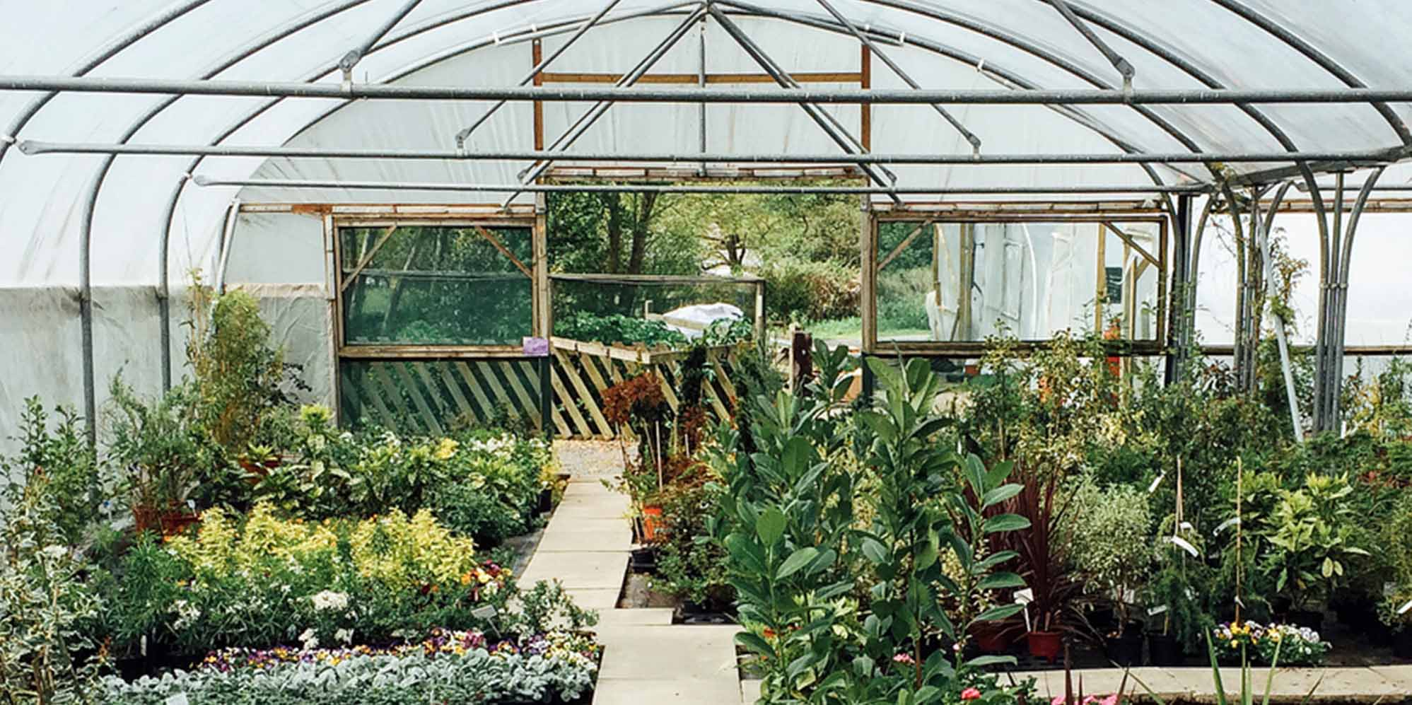 8 Best Charlotte Garden And Nursery S Expertise