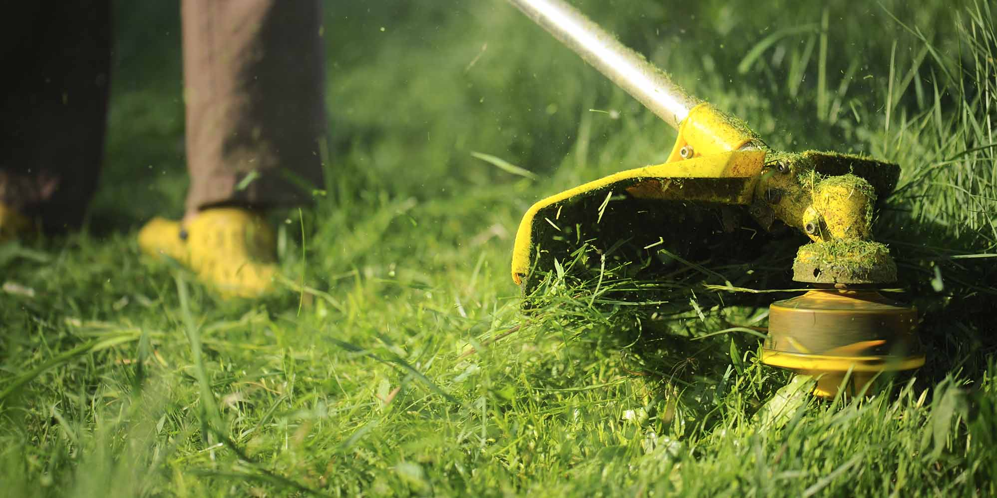business plan for lawn mowing company boise