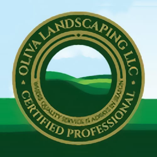 15 Best San Antonio Landscapers Expertise
