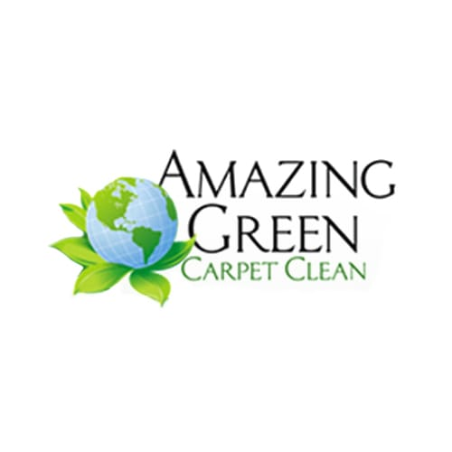 20 Best Minneapolis Carpet Cleaners Expertise