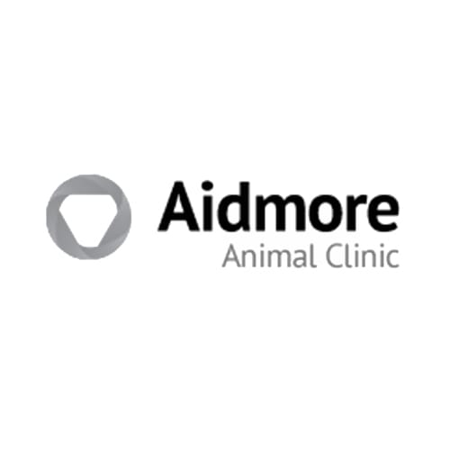 13 best augusta dog boarders expertise aidmore animal clinic solutioingenieria Image collections