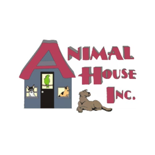 13 best augusta dog boarders expertise the animal house solutioingenieria Image collections