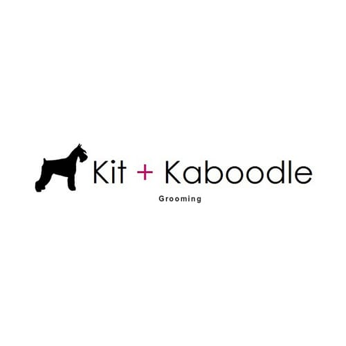 17 best austin dog groomers expertise solutioingenieria Images