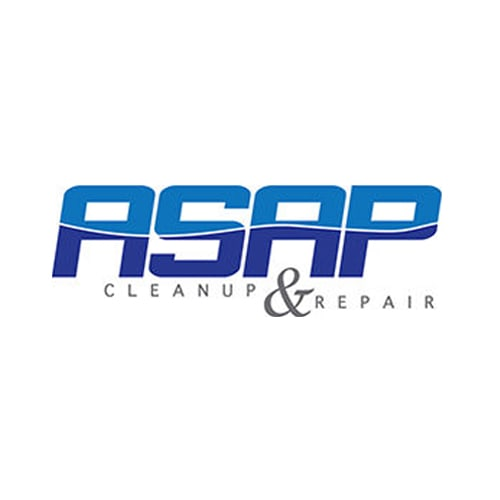 20 Best Boise Carpet Cleaners Expertise