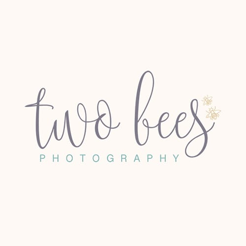 Two bees photography