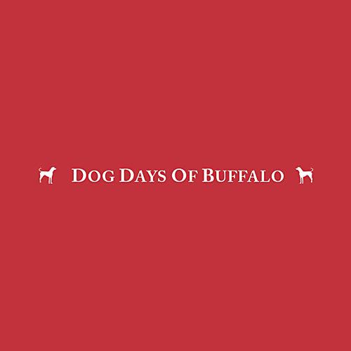 17 best buffalo dog groomers expertise dog days of buffalo solutioingenieria Image collections