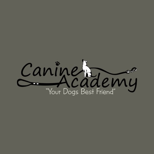 17 best buffalo dog groomers expertise canine academy solutioingenieria Image collections