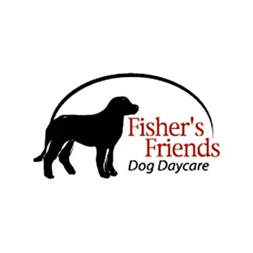 17 best buffalo dog groomers expertise fishers friends dog daycare solutioingenieria Image collections