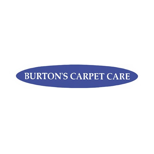 6 Best Carlsbad Carpet Cleaners Expertise