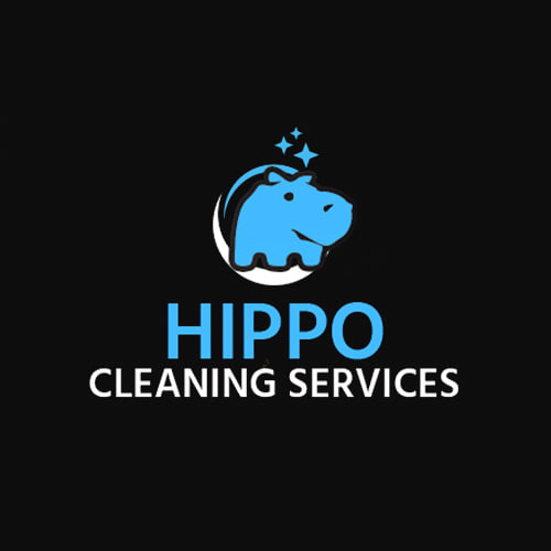 Carpet Cleaning Silver Spring Md Silver Spring Carpet Cleaning Md Professional Cleaning