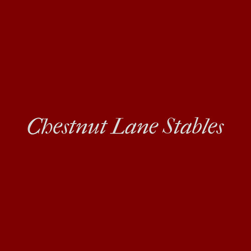 19 Best Charlotte Horse Boarders Expertise