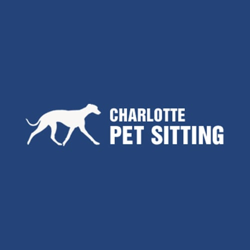 13 Best Charlotte Pet Sitters Expertise