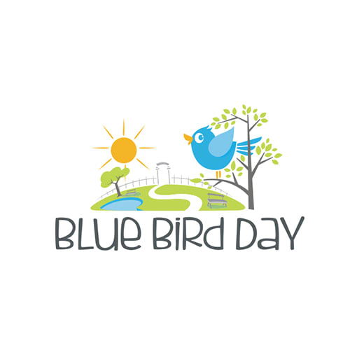 Blue Bird Day Llc