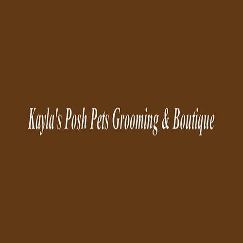 18 best cincinnati dog groomers expertise kaylas posh pets grooming boutique solutioingenieria Gallery