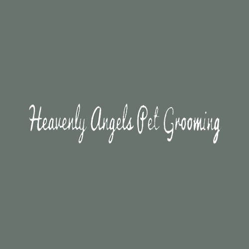 18 best cincinnati dog groomers expertise heavenly angels pet grooming solutioingenieria Gallery