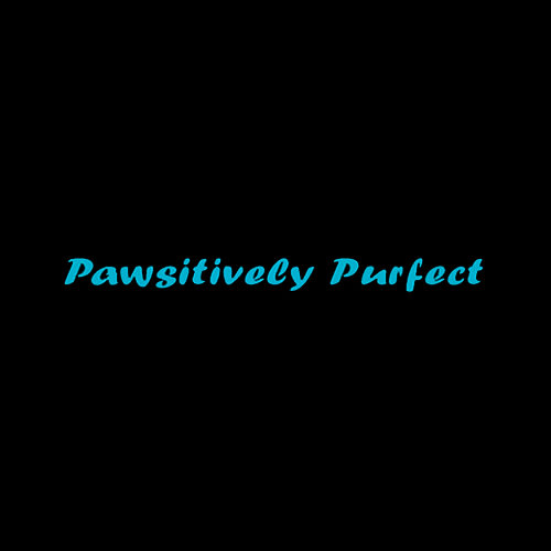 18 best cincinnati dog groomers expertise pawsitively purfect salon boutique solutioingenieria Gallery