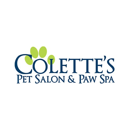 8 best dayton dog groomers expertise collettes pet salon paw spa solutioingenieria Image collections