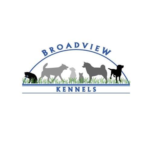 20 best denver dog groomers expertise solutioingenieria Gallery