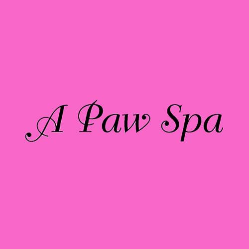 20 best denver dog groomers expertise here are the picks solutioingenieria Gallery