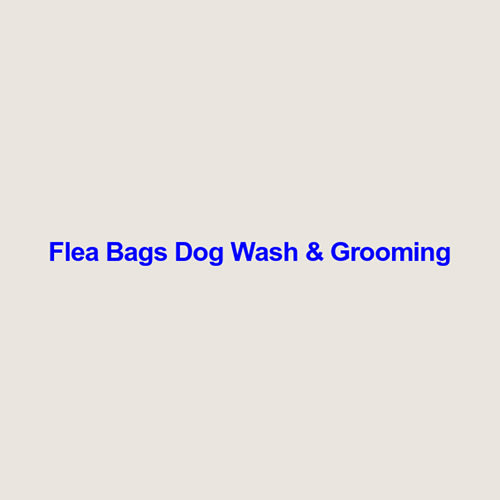 8 best redlands dog groomers expertise here are the picks solutioingenieria Gallery