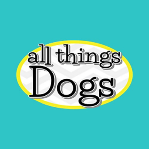 19 Best Kansas City Dog Groomers Expertise