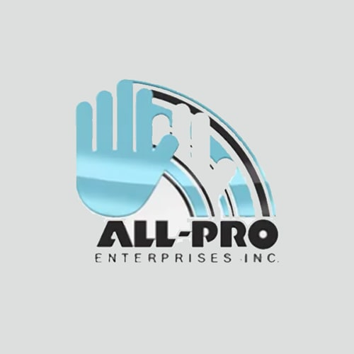 All Pro Enterprises, Inc.