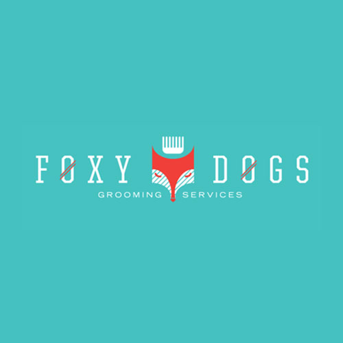 19 best minneapolis dog groomers expertise foxy dogs solutioingenieria Image collections