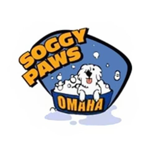 17 best omaha dog groomers expertise soggy paws omaha solutioingenieria Images