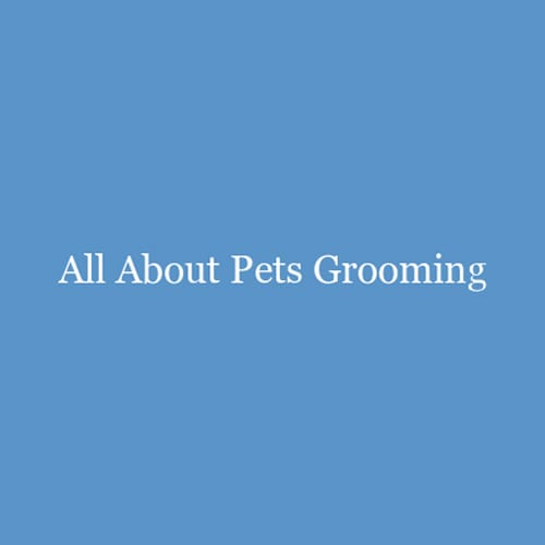 20 Best Raleigh Dog Groomers Expertise