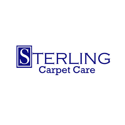 21 Best Reno Carpet Cleaners Expertise