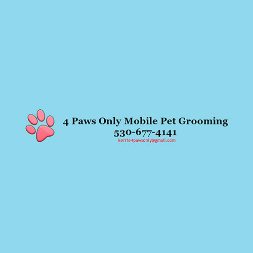 19 best sacramento dog groomers expertise 4 paws only mobile pet grooming solutioingenieria Choice Image