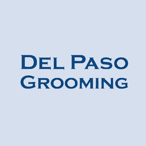 19 best sacramento dog groomers expertise solutioingenieria Image collections