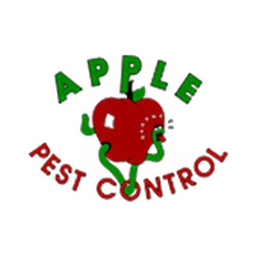 20 Best San Antonio Pest Control Companies Expertise