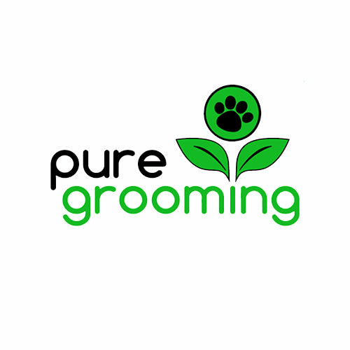 6 best escondido dog groomers expertise solutioingenieria Choice Image