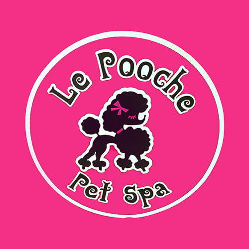18 best san diego dog groomers expertise le pooche pet spa solutioingenieria Images
