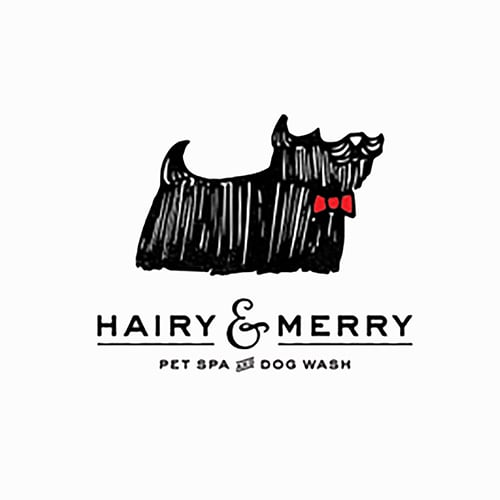 18 best san diego dog groomers expertise hairy merry solutioingenieria Images