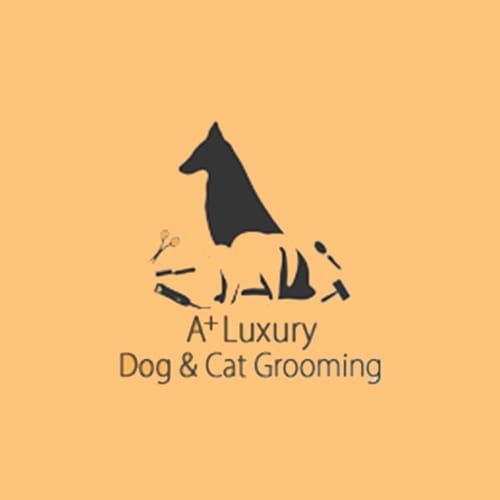 9 best san jose dog groomers expertise a dog cat grooming solutioingenieria Image collections