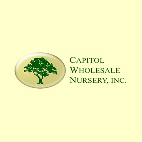 Capitol Whole Nursery Inc