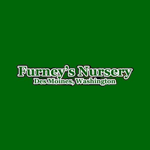 Furney S Nursery