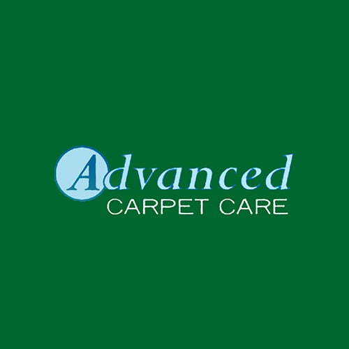 20 Best Seattle Carpet Cleaners Expertise