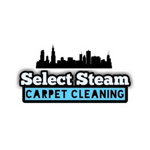 31 Best Chicago Carpet Cleaners Expertise