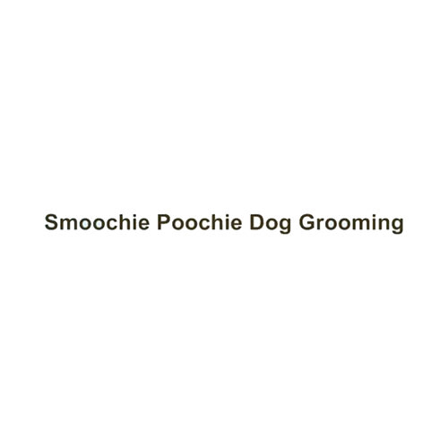12 best gilbert dog groomers expertise solutioingenieria Image collections