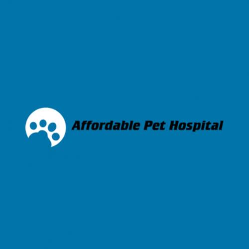 17 Best Tampa Veterinarians | Expertise