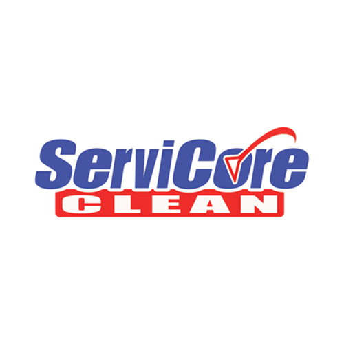 20 Best Tampa Carpet Cleaners Expertise
